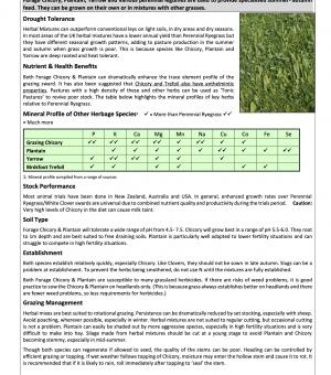 Grass HERBAL GRAZING Options