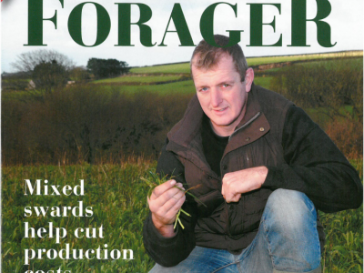 Phil Kent Forager Magazine Cover Sheep Farming