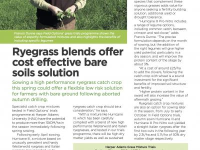 In-Field-Focus Spring Sown High Performance Ryegrass